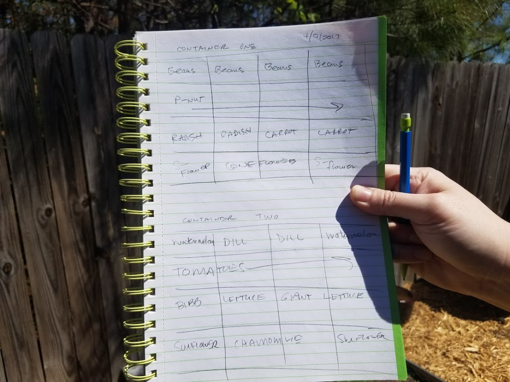 grid plan for raised beds